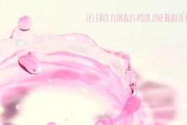 Eaux florales ou hydrolats