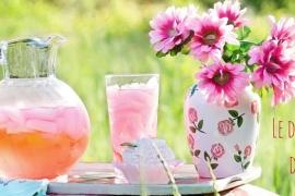 10 bonnes raisons d'aimer le mois de juin